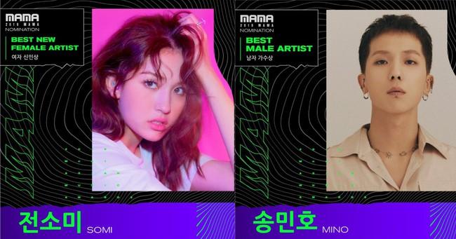 """Với những lý do này, BLACKPINK vẫn có khả năng vẫn nhận cúp MAMA 2019 mặc cho YG và Mnet """"nghỉ chơi"""" - Ảnh 1."""