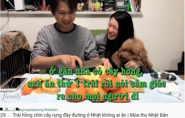 Cặp chồng Việt lấy vợ Nhật làm Youtuber kể về cuộc sống bình dị nhiều niềm vui ở xứ anh đào - Ảnh 5.