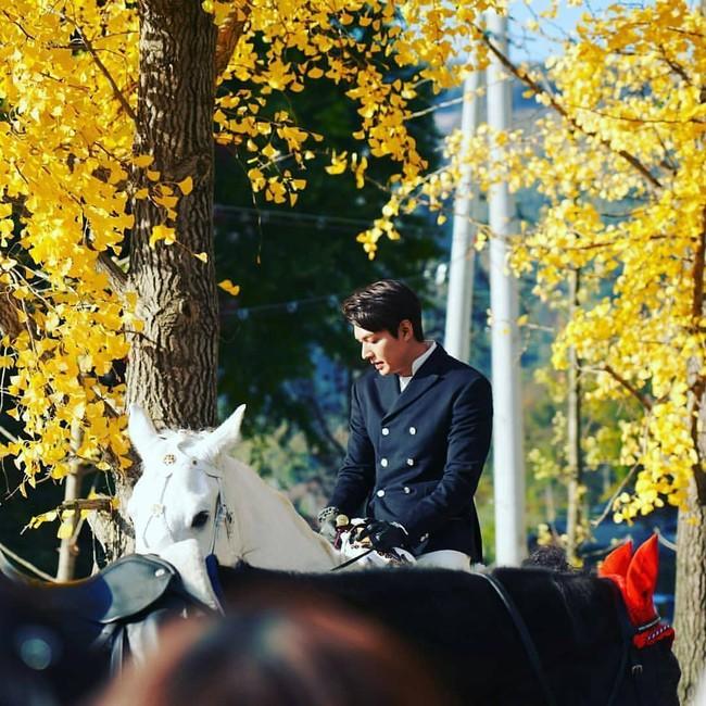 Lộ tạo hình siêu điển trai của Lee Min Ho cưỡi bạch mã giữa rừng lá vàng trong phim mới được viết bởi biên kịch Hậu duệ mặt trời  - Ảnh 2.