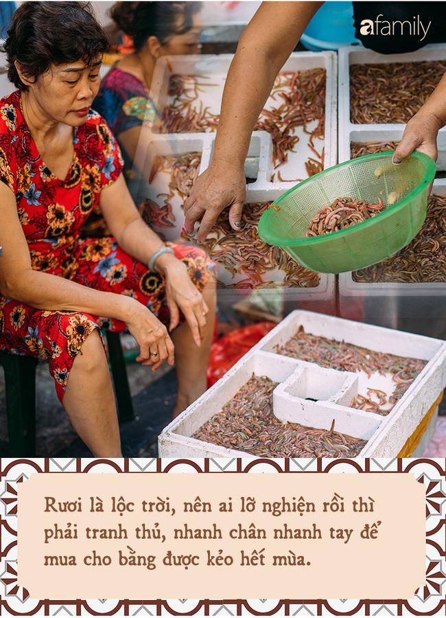 """Rươi - báu vật ruộng đồng và văn hóa """"đi ăn rươi đi"""" mỗi khi lạnh trời của người Hà Nội - Ảnh 3."""