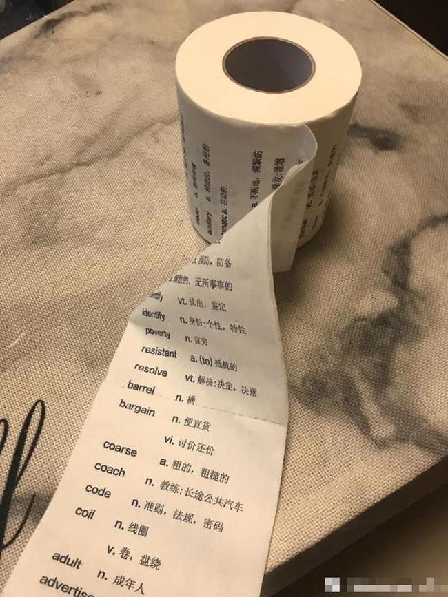 Ở Việt Nam bị thơ ơ nhưng giấy vệ sinh tại nước ngoài lại có giá đắt cắt cổ với muôn hình vạn trạng thu hút khách hàng - Ảnh 7.