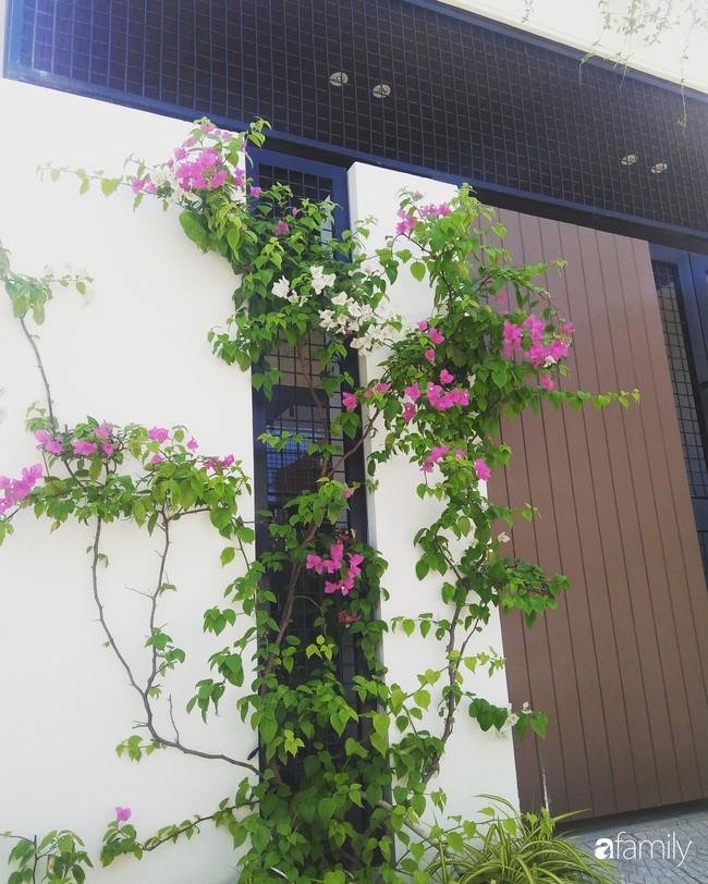 Nhà phố không cần lắp điều hòa vẫn thoáng mát, dễ chịu nhờ thiết kế giếng trời hợp lý ở Đà Nẵng - Ảnh 2.