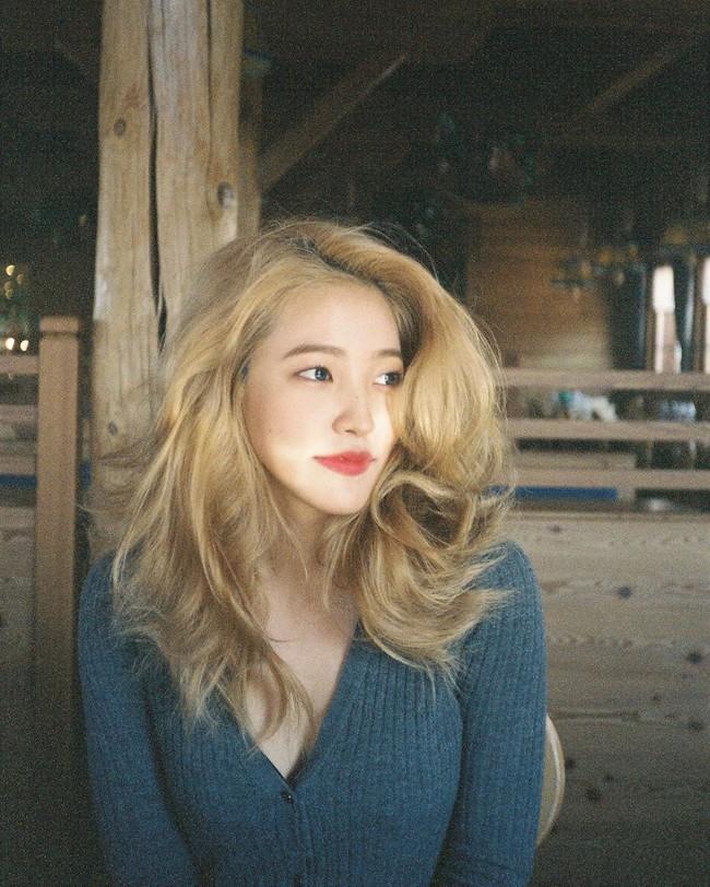 Idol Hàn nhuộm tóc rất nhiều nhưng tóc họ lúc nào cũng mượt mà đáng ghen tị nhơ 5 bí kíp chăm sóc này - Ảnh 5.