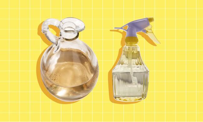 """Những vật dụng chứa cả """"ổ"""" vi khuẩn trong nhà và cách làm sạch đơn giản không ngờ - Ảnh 3."""