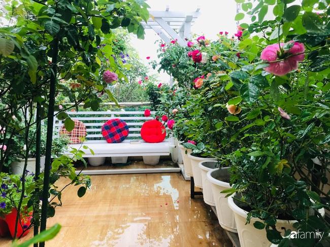 70 gốc hồng khoe hương sắc trên sân thượng nhờ tình yêu và tâm huyết chăm cây của cô giáo xứ Thanh - Ảnh 8.
