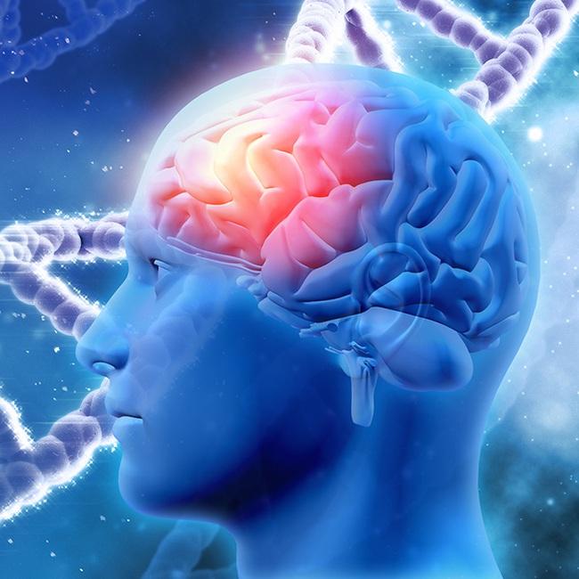 Nhiều người có vấn đề về trí nhớ mà không hề hay biết, bạn hãy làm nhanh bài test này để có câu trả lời cho mình - Ảnh 3.