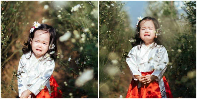 """Dẫn con gái đi chụp ảnh cúc hoa mi, ai ngờ lại được """"bộ ảnh khóc"""" - Ảnh 1."""
