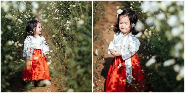 """Dẫn con gái đi chụp ảnh cúc hoa mi, ai ngờ lại được """"bộ ảnh khóc"""" - Ảnh 2."""