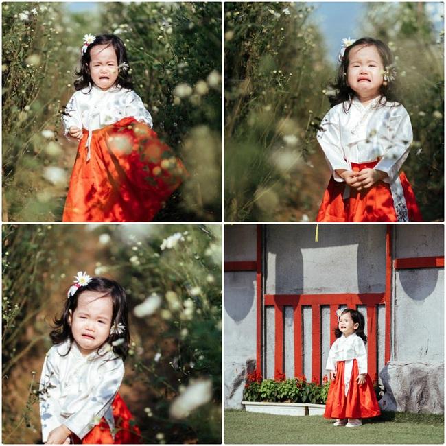 """Dẫn con gái đi chụp ảnh cúc hoa mi, ai ngờ lại được """"bộ ảnh khóc"""" - Ảnh 3."""