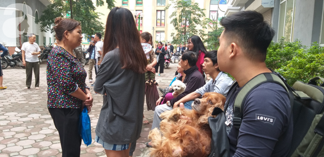 Hà Nội: Cháy chung cư vắng chủ nhà, người già ôm trẻ nhỏ chạy bộ từ tầng cao xuống - Ảnh 7.