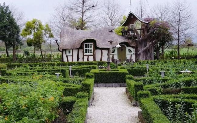 Cụ bà 60 tuổi mua 14 mẫu đất cách đây 12 năm để xây dựng lâu đài cổ tích an hưởng tuổi già cùng người thân - Ảnh 4.