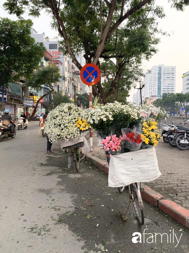 Vào mùa cúc họa mi đón đông khắp phố phường Hà Nội, giá thành lại hợp lý nên nhiều chị em nô nức ghé vào mua - Ảnh 4.