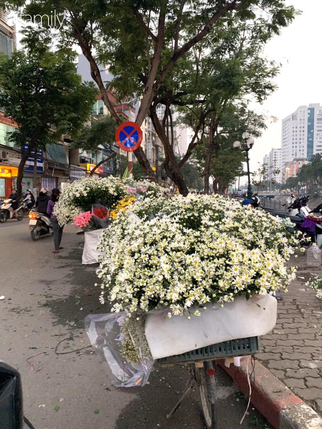 Vào mùa cúc họa mi đón đông khắp phố phường Hà Nội, giá thành lại hợp lý nên nhiều chị em nô nức ghé vào mua - Ảnh 5.