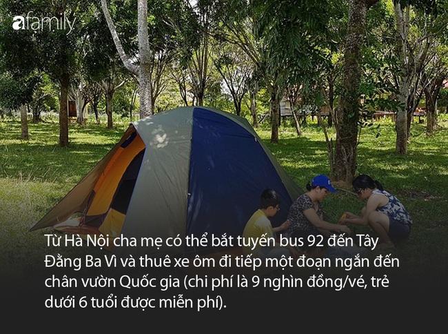 Cách Hà Nội chỉ 60km, đây đích thị là địa điểm lý tưởng để cha mẹ đưa con cái đi vui chơi cuối tuần - Ảnh 3.