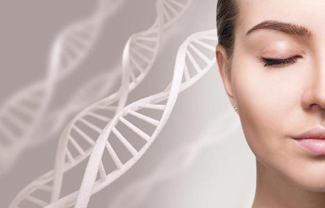 Trước khi làm đẹp da bằng tế bào gốc để chạy đua chống lão hóa: Hãy nhớ rõ điều này nếu không sẽ thành công cốc! - Ảnh 1.