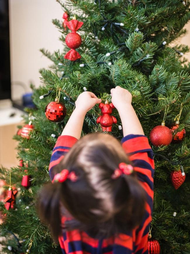 Giá chỉ từ 350.000 đồng, những cây thông Noel tươi đang hấp dẫn người tiêu dùng trong dịp Giáng sinh sắp đến - Ảnh 2.