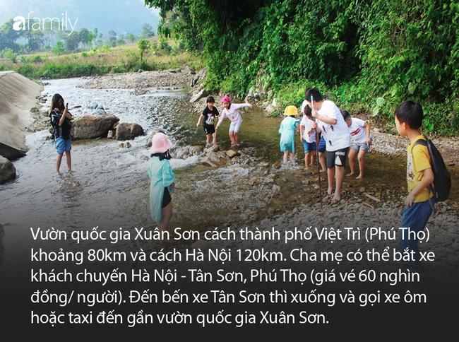 Thêm một đia điểm lý tưởng để cha mẹ đưa con đi chơi cuối tuần, chỉ cách Hà Nội 120km - Ảnh 2.