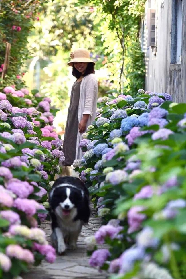 Cặp vợ chồng trẻ dành 5 năm để biến khu đất hoang rộng 6000m2 thành thiên đường của cỏ cây, hoa lá - Ảnh 14.