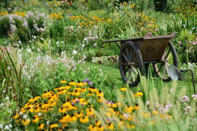 Cặp vợ chồng trẻ dành 5 năm để biến khu đất hoang rộng 6000m2 thành thiên đường của cỏ cây, hoa lá - Ảnh 13.