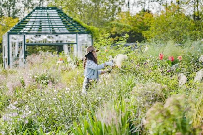 Cặp vợ chồng trẻ dành 5 năm để biến khu đất hoang rộng 6000m2 thành thiên đường của cỏ cây, hoa lá - Ảnh 12.