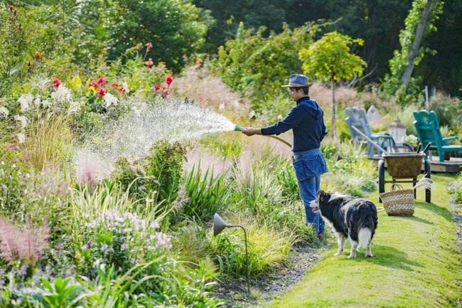 Cặp vợ chồng trẻ dành 5 năm để biến khu đất hoang rộng 6000m2 thành thiên đường của cỏ cây, hoa lá - Ảnh 2.
