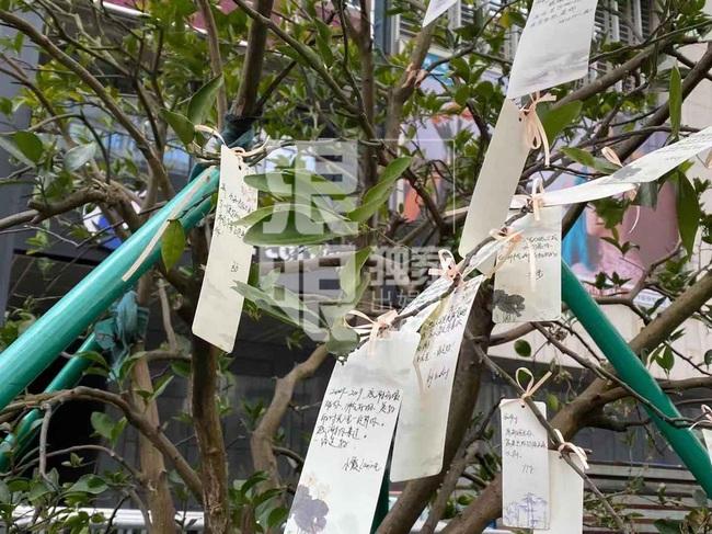 Đông đảo người hâm mộ gửi hoa và lời nhắn trong lễ tưởng niệm Cao Dĩ Tường tại chính hiện trường nơi xảy ra vụ tai nạn - Ảnh 8.