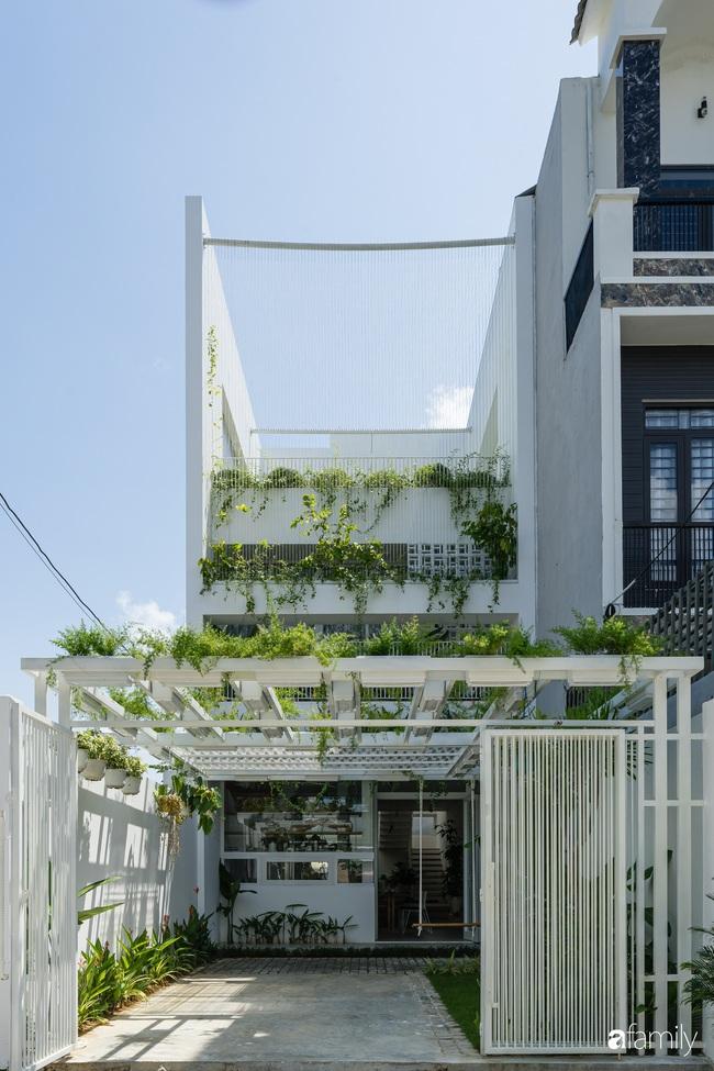 Căn nhà phố trong lành và duyên dáng với cây xanh thân thiện của cặp vợ chồng mới cưới ở TP Đà Nẵng - Ảnh 3.