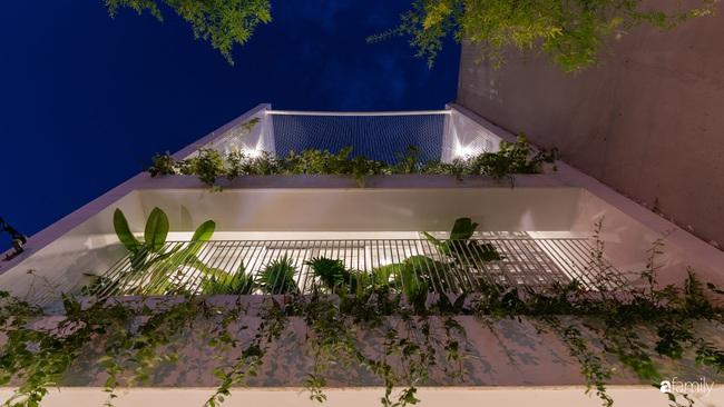 Căn nhà phố trong lành và duyên dáng với cây xanh thân thiện của cặp vợ chồng mới cưới ở TP Đà Nẵng - Ảnh 1.