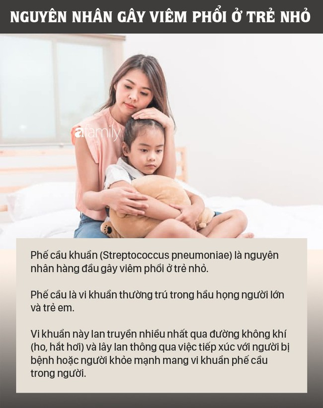 Viêm phổi là bệnh lây nhiễm nguy hiểm và gây tử vong nhiều hơn bất cứ bệnh nào: Nguyên nhân và triệu chứng bệnh viêm phổi ở trẻ nhỏ - Ảnh 2.