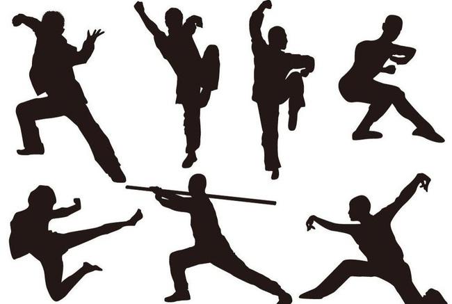 """Wushu: Môn võ thuật """"đẹp và độc"""" từ Trung Quốc  - Ảnh 2."""
