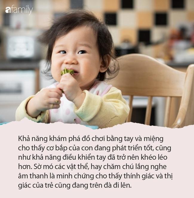Cha mẹ có biết khi được 6 tháng tuổi, con đã biết tò mò về mọi thứ - Ảnh 1.
