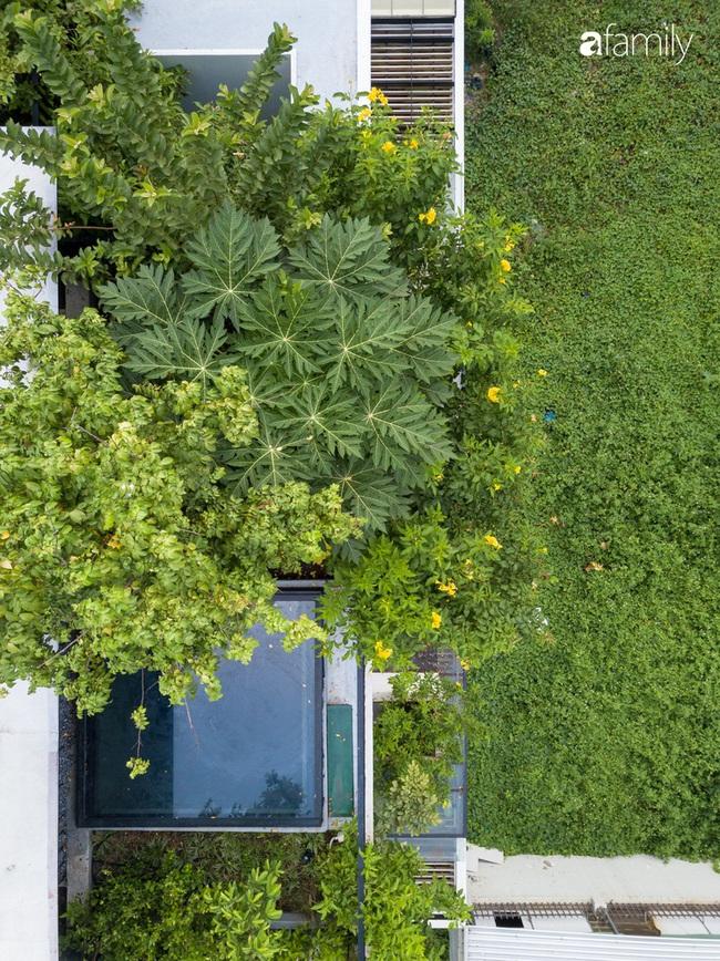 Ngôi nhà màu trắng với 10 khu vườn lơ lửng xung quanh ở quận 2 Sài Gòn - Ảnh 4.