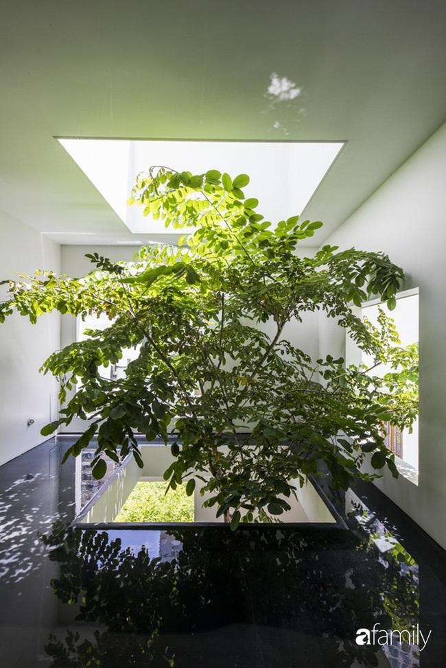 Ngôi nhà màu trắng với 10 khu vườn lơ lửng xung quanh ở quận 2 Sài Gòn - Ảnh 10.