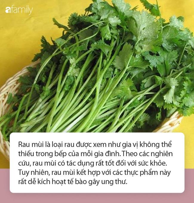 Rau mùi rất tốt nhưng kết hợp với những thực phẩm này có thể nuôi tế bào ung thư - Ảnh 1.