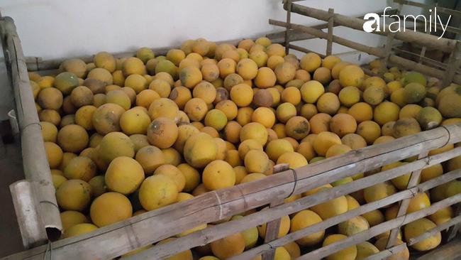 6 mách nước giúp bà nội trợ Việt chọn bưởi Diễn ăn Tết 10 quả thơm ngọt như 10 - Ảnh 5.