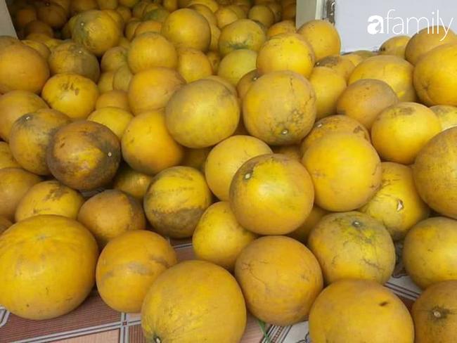 6 mách nước giúp bà nội trợ Việt chọn bưởi Diễn ăn Tết 10 quả thơm ngọt như 10 - Ảnh 6.