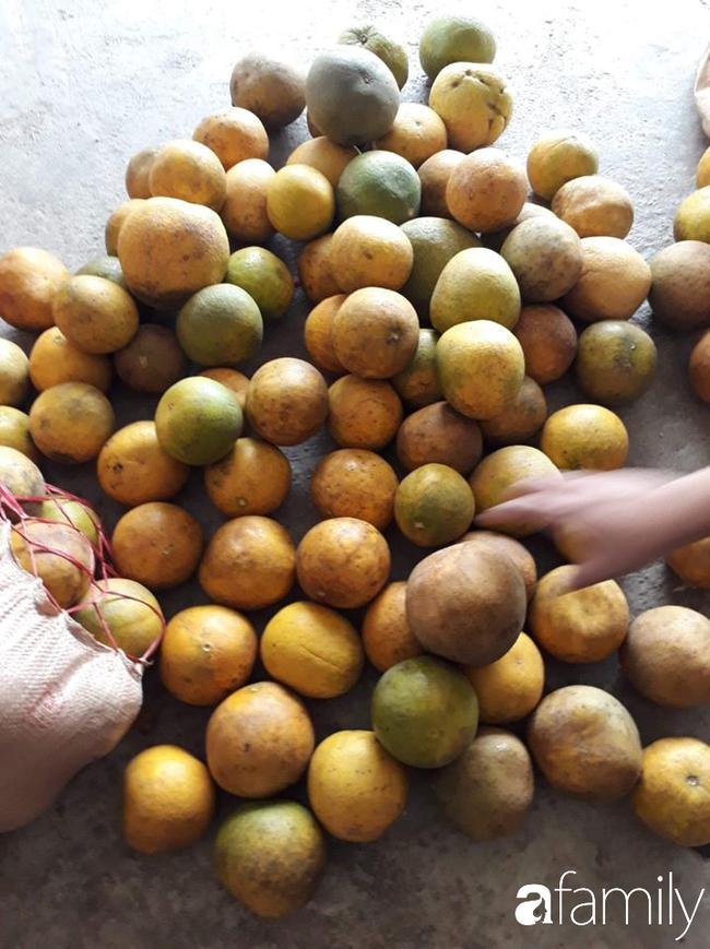 Cùng nghe người bán bưởi Diễn 13 năm kinh nghiệm mách 6 mẹo nhỏ giúp bà nội trợ Việt chọn bưởi Diễn ăn Tết 10 quả thơm ngọt như 10 - Ảnh 9.