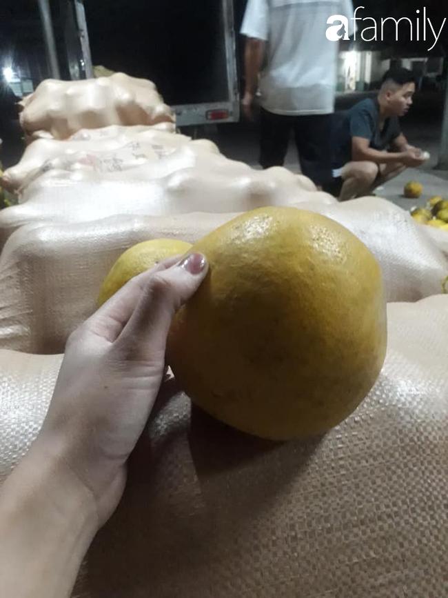 6 mách nước giúp bà nội trợ Việt chọn bưởi Diễn ăn Tết 10 quả thơm ngọt như 10 - Ảnh 13.