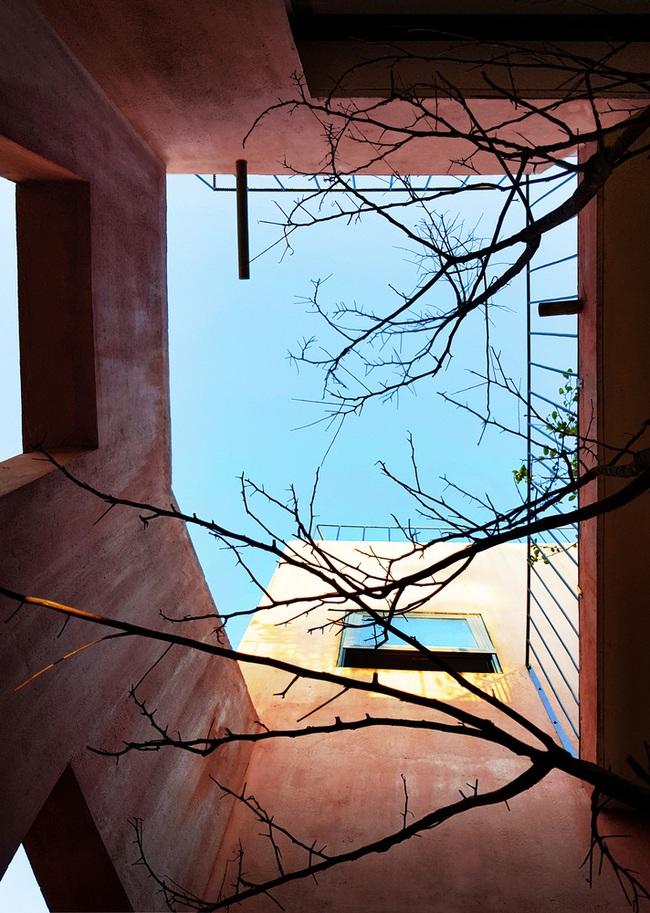 Vườn rau 7 bậc thang xanh tươi trên mái nhà của vợ chồng trung niên được các con xây tặng ở Quảng Ngãi - Ảnh 12.