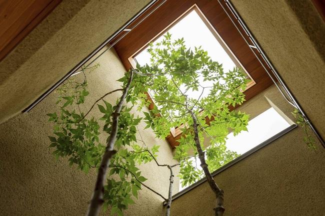 Ngôi nhà phố tạo dấu ấn đặc biệt với những tiểu cảnh thiết kế tinh tế ở Nhật Bản - Ảnh 13.