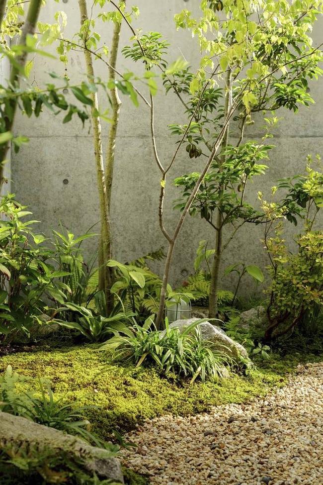 Ngôi nhà phố tạo dấu ấn đặc biệt với những tiểu cảnh thiết kế tinh tế ở Nhật Bản - Ảnh 12.