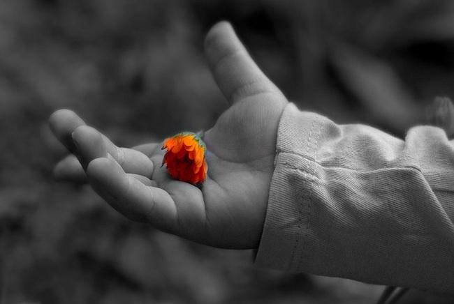 Người muốn phú quý phải dựa vào đức, nhưng đức vơi hay đầy thì phải nhìn vào điểm này mới biết được - Ảnh 2.