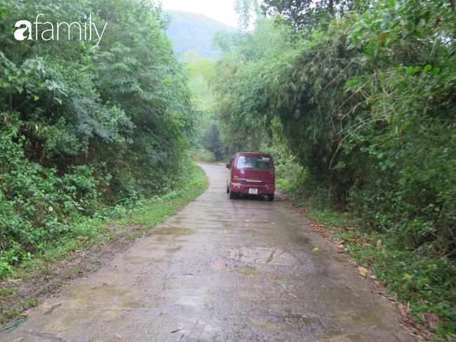 Đến Quốc Oai ở nhà đồi, trải nghiệm nhặt hạt dẻ trong rừng y như truyện cổ tích  - Ảnh 1.