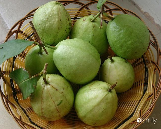 Sân thượng trồng đủ loại rau quả sạch như vườn dưới đất ở Vũng Tàu - Ảnh 15.