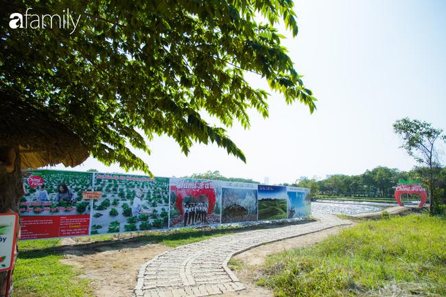 Cuối tuần ở Hà Nội chưa biết đi đâu chơi, bố mẹ đừng ngại chở các bé tới ngay vườn dâu xinh mới mở để thỏa thích khám phá - Ảnh 1.