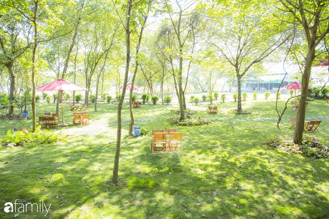 Cuối tuần ở Hà Nội chưa biết đi đâu chơi, bố mẹ đừng ngại chở các bé tới ngay vườn dâu xinh mới mở để thỏa thích khám phá - Ảnh 8.