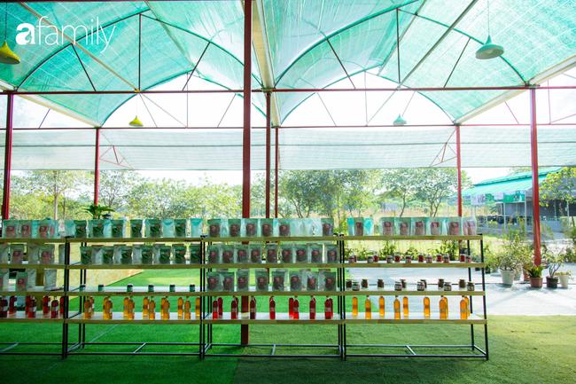 Cuối tuần ở Hà Nội chưa biết đi đâu chơi, bố mẹ đừng ngại chở các bé tới ngay vườn dâu xinh mới mở để thỏa thích khám phá - Ảnh 15.