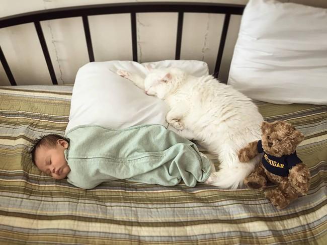 Từ nếp ăn đến nếp ngủ, mẹ Việt ở Mỹ luyện con ngủ xuyên đêm không tốn một giọt nước mắt - Ảnh 4.