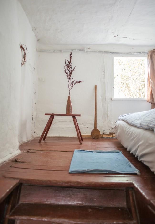 Thăm khu vườn bình yên bên hoa lá rộng 25.000m² và ngôi nhà bình dị của cô gái độc thân ở vùng nông thôn  - Ảnh 7.