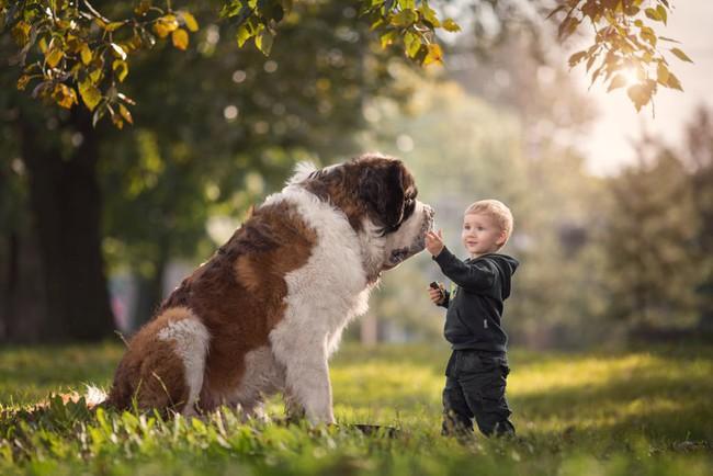 Bộ ảnh đẹp đến nao lòng của các bé chụp cùng thú cưng khổng lồ khiến ai nấy đều phải ngẩn ngơ, trầm trồ - Ảnh 1.
